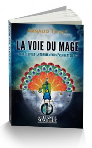 La Voie du Mage - Seconde Edition