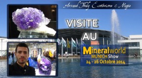 Visite au Munich Mineral Show avec Arnaud THULY